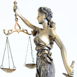 Rechtsanwältin Mana Amiri